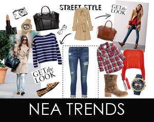 nea trends 2013 2014